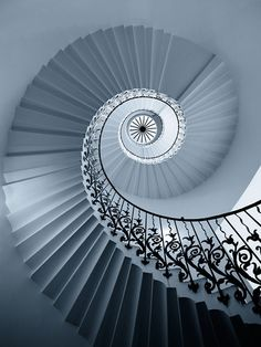 Popular Photos - Tulip Staircase by Michael Toye (stairs, black, white, railing, spiral) Beautiful Stairs, Beautiful Buildings, Grand Staircase, Staircase Design, Curved Staircase, Amazing Architecture, Art And Architecture, Installation Architecture, Mode Origami