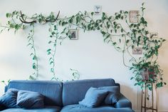 Sofa and wall with plant (Heart leaf philodendron / Devil's ivy), by Ellika H   www.ellikah.com