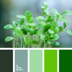 Paleta de colores №2910
