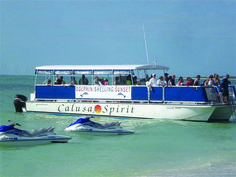 Marco Island Water Sports Calusa Spirit sightseeing, dolphin, shelling tours Marco Island, Florida