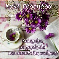Travel Inspiration, Floral, Flowers, Google, Royal Icing Flowers, Flower, Flower, Florals, Blossoms