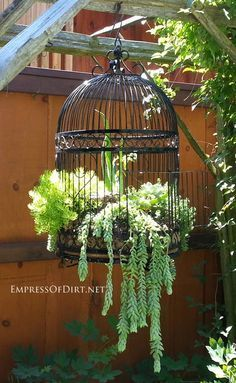Creative garden containers ideas for unusual planters including boots metal wagons skates birdcages junk and more. Basket Planters, Hanging Baskets, Garden Planters, Succulents Garden, Hanging Herbs, Garden Junk, Planter Ideas, Planter Pots, Vintage Garden Decor