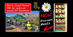 HILLCREST BERRY ORCHARDS Orchards, Frozen Meals, Good News, South Africa, Berry, Places To Go, Comic Books, Restaurant, Baseball Cards