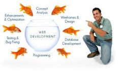 A good systematic development is a must
