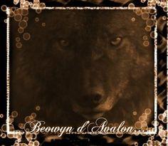 Beowyn d'Avalon, le loup...