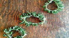 What's not to love about rosemary? Its refreshing fragrance, minimal maintenance needs, and enhancement of every food from chicken to bacon has captured our Rosemary Plant, House Plants, Spices, Fragrance, Thanksgiving, Herbs, Holidays, Fall, Health