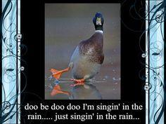 doo be doo doo I'm singin' in the rain..... just singin' in the rain...