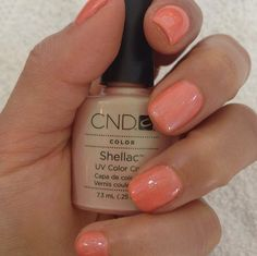 Shay Mitchell's Beachy Summer Nails -- Get Her Pretty Look