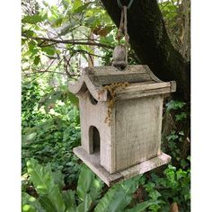 The flowers of Oak Trees take the form of catkins and their fruit is the acorn. My oak trees have finished flowering and are dropping their catkins over everything including this bird house.