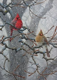 """Winter Pair - Cardinals"" by Larry Zach"
