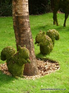 Topiary Squirrels at Holiday Park~My dogs would be loving all over this!