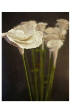 Set of 6 White Flowers  Decoration  Home decor  Wedding by oenopia