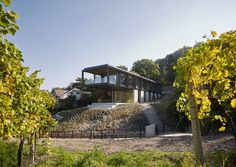 Gallery of House in the Vineyards / Dietrich | Untertrifaller Architekten + Alexander Janowsky - 6 Garden Levels, Glass Balustrade, Take The Stairs, Exposed Concrete, Glass Facades, Steel House, Terrace Garden, Steel Structure, Open Plan Living