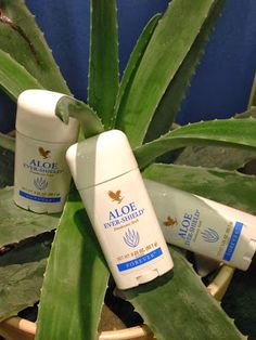 Aloe Vera Forever DK: Bedste deo stick: Aloe Ever-Shield deodorant - ogs. Forever Living Aloe Vera, Forever Aloe, Aloe Heat Lotion, Forever Living Business, Forever Living Products, W 6, Health And Beauty, Sick, Skin Care