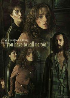 Harry, hermione et sirius