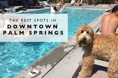 The Best Spots in Do