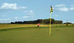 Bayside #golfhome #golfcourse #beachgolf #golf #beach