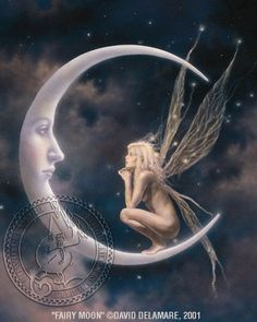 fairy, moon = beautiful
