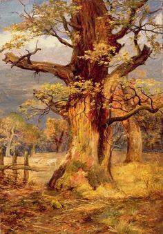 JAMES J. FAED Blasted Oak, Galloway #tree #art