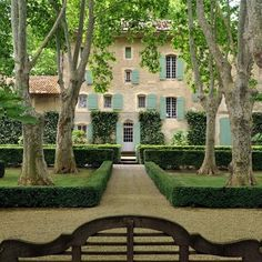 Tara Dillard: Vines, low meadow, trees, clipped hedges, gravel, axis, focal points, color, done.  Provence, France: Architectural Digest