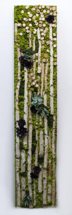 LW1005 Birch, Mixed Green and Burgandy Succulents with Chartruese Reindeer Moss in Bronze Metal Frame 96H x 20W x 4D $5725 Retail - Good Gardening
