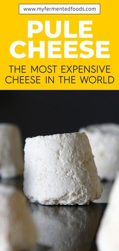Pule Cheese: The Most Expensive Cheese in the World Ever heard of pule cheese? It is the most expensive and rarest cheese in the world. Pule cheese is made from donkey milk. Read my post to find out more. Good Healthy Recipes, Unique Recipes, Whole Food Recipes, Vegan Recipes, Healthy Foods, Kefir How To Make, Kombucha How To Make, How To Make Cheese, Non Dairy Cheese