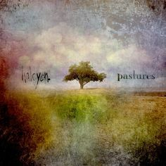 Pastures (Halcyon)