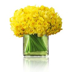 square vase floral arrangement with daffodils