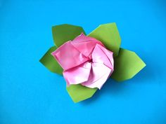 Joost Langeveld pink origami azalea video