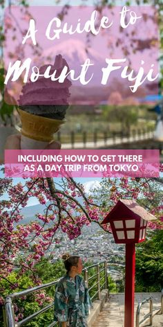 Thinking of going on a day trip to Mount Fuji from Tokyo? In this article you can read how and some tips for your visit to Mount Fuji. Nara, Disneyland, Mount Fuji Japan, Day Trips From Tokyo, Japan Holidays, Japan Guide, Japan Travel Guide, Travel List, Usa Tumblr