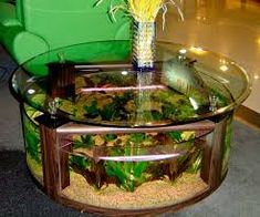 Coffee Table Aquarium Design similar to one I saw and fell in love with years ago Table Aquarium, Glass Aquarium, Home Aquarium, Aquarium Fish Tank, Aquarium Ideas, Fish Tank Table, Fish Tank Coffee Table, Round Glass Coffee Table, Glass Table