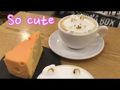 Cat Latte and Cheese Shaped Cheese Cake in Seoul Cafe - YouTube