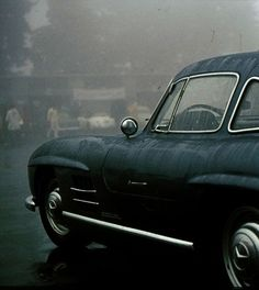 Gullwing in the rain. Static beauty!