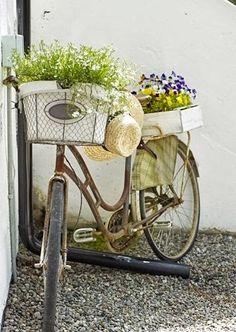 old bicycle Bycicle Vintage, Bycicle Art Bicycle Decor, Old Bicycle, Bicycle Art, Old Bikes, Bicycle Tools, Bike Planter, Vintage Sweets, Cactus Planta, Vintage Stil