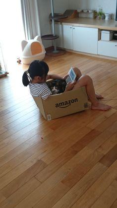 """""""うちの箱入り娘達     #箱入り娘  #猫  #Amazonの箱"""""""