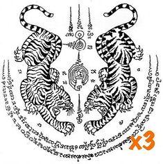 Asian tiger tattoo designs with asian wording. Find and save ideas about Asian tiger tattoo designs with asian wording on Tattoos Book. More than FREE TATTOOS Word Tattoos, Cute Tattoos, New Tattoos, Small Tattoos, Tribal Tattoos, Tatuagem Sak Yant, Sak Yant Tattoo, Tattoo Maori, Tiger Tattoo Design