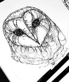 Barn Owl sketching - Kate Fitzpatrick ; this would make an amazing tattoo, beautiful piece to carry with you forever