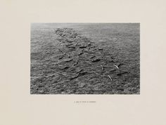 Richard Long 'A Line of Sticks in Somerset', 1974 © Richard Long