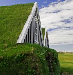 Sod Roof by uptick, via Flickr