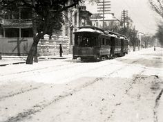 Snow day in Charleston, SC. Trolley at Meeting and Ladson (vicinity of 35 Meeting Street). Possibly 1899, photographer M.B. Paine. Charleston Museum
