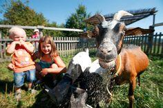 Vybíráme   Dopřejte si rodinný výlet na Farmu Blaník s volným vstupem do zábavního areálu   Víkendový RELAX
