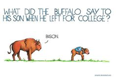 Funny pictures about Bison Jokes Are The Best. Oh, and cool pics about Bison Jokes Are The Best. Also, Bison Jokes Are The Best photos. Funny Corny Jokes, Cute Jokes, Cheesy Jokes, Mom Jokes, Funny Jokes For Kids, Funny Quotes, Hilarious, Funny Stuff, Funny Things
