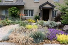 A drought tolerant landscape consists of plants that require very little water, or no water, as in the case of Xeriscape plants (once they get established). There is a surprisingly large number of trees, plants and shrubs that fit this bill. By getting rid of your lawn and replacing it with low-water-needs shrubs, you will drastically reduce your water usage and a whole lot of maintenance. Say goodbye to mowing every weekend in the heat!