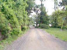 Surprise lake camp road