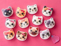 「猫まみれ」第2弾! 猫まみれまくら&布団カバーセット発売。きっと猫の夢が見られるニャ!│フェリシモ猫部