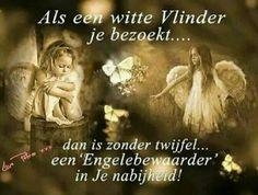 Witte Vlinder ☺