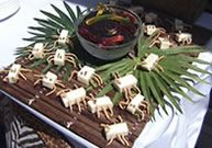 Lots of ideas for safari themed party
