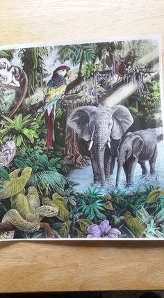 Coloured By Valarie Kelly. Thank the artist done with pencil.