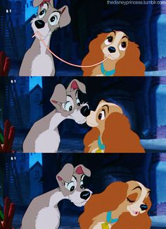 lady and the tramp ♥