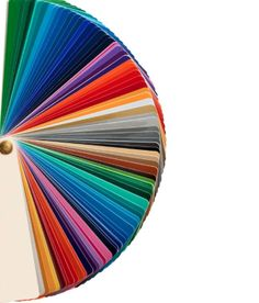 Bright + bold color pallets